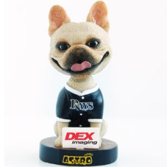 High Quality Customized Rays Dog Resin Bobble Head Dolls
