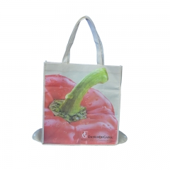Hot sell  eco-friendly reusable Nonwoven bag Shopping bag