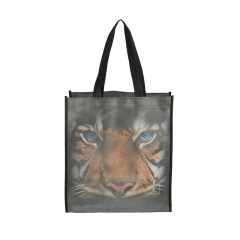 Hot sell promotion shopping bag