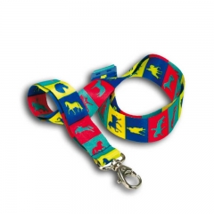 Lanyard for Teenagers ID Card Holder