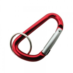 Outdoor Survival Carabiner with High Quality Keychain
