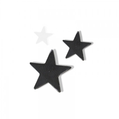 Custom star Label pin
