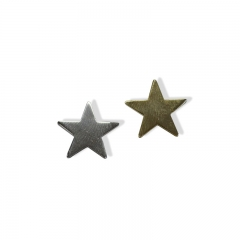 Custom little star Label pin